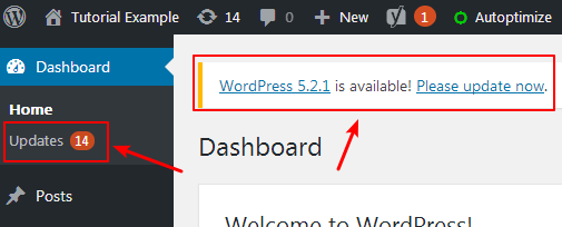 disable wordpress update notification