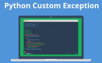 Python raise custom exception