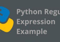 Python Regular Expressions Flags