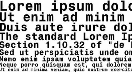 monospace font example