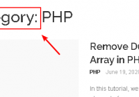 Implement apply_filters( 'get_the_archive_title') to Remove WordPress Category, Tag Page Title Prefix - WordPress Tutorial