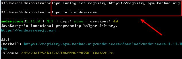 set node.js npm registry