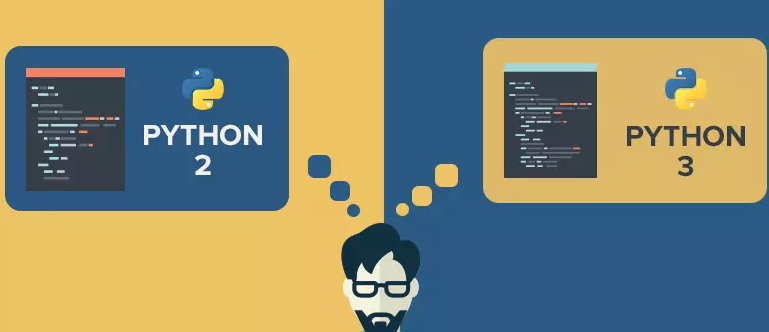 Check Python Verison for Different Processing in a Python Script